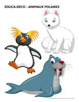 Éduca-déco-Animaux polaires-1