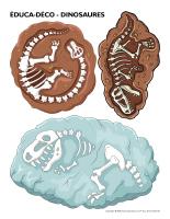 Éduca-déco-Dinosaures-1