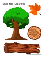Éduca-déco-Les arbres-1