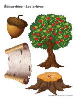 Éduca-déco-Les arbres-2