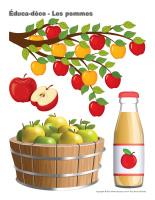 Éduca-déco-Les pommes-1