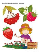 Éduca-déco-Petits fruits-1