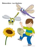 Éduca-déco-les libellules-2