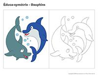 Éduca-symétrie-Dauphins