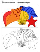 Éduca-symétrie-Les coquillages