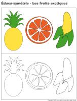 Éduca-symétrie-Les-fruits exotiques