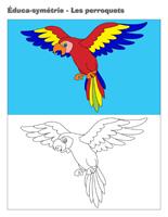 Éduca-symétrie-Les perroquets