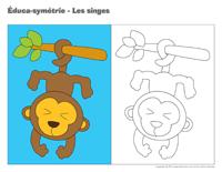 Éduca-symétrie-Les singes