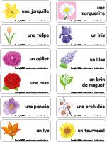Étiquette-mots-Fleurs
