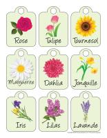 Étiquettes autocollants-Les semences-3
