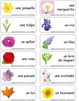Étiquettes-mots - Les fleurs