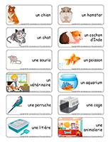 Étiquettes-mots-Animaux domestiques