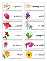 Étiquettes-mots-Fleurs lire écrire