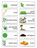 Étiquettes-mots-L'herbe