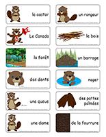Étiquettes-mots-Les castors