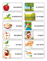 Étiquettes-mots-Pommes