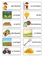 Étiquettes-mots-Récoltes