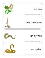 Étiquettes-mots géants - Les serpents