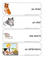 Étiquettes-mots géants-Animaux domestiques-1