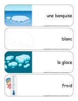 Étiquettes-mots géants-Animaux polaires-1