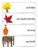 Étiquettes-mots géants-Cabane à sucre-1