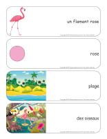 Étiquettes-mots géants-Flamants roses-1
