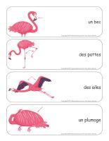 Étiquettes-mots géants-Flamants roses-2