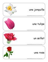 Étiquettes-mots géants-Fleurs lecture