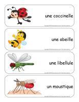 Étiquettes-mots géants-Insectes-2