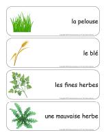 Étiquettes-mots-géants-L'herbe