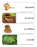 Étiquettes-mots géants-Le jour de la marmotte-3