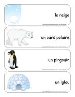 Étiquettes-mots géants-Le monde polaire-2