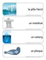 Étiquettes-mots géants-Le monde polaire-3