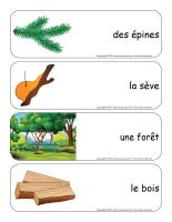 Étiquettes-mots géants-Les arbres-3