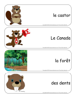 Étiquettes-mots géants-Les castors-1