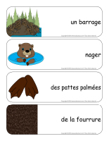 Étiquettes-mots géants-Les castors-3