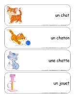 Étiquettes-mots géants-Les chats et les chatons