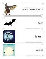 Étiquettes-mots géants-Les chauvesouris-1