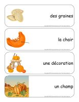 Étiquettes-mots géants-Les citrouilles-2
