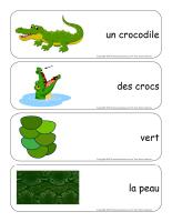 Étiquettes-mots-géants-Les crocodiles