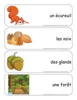 Étiquettes-mots géants-Les écureuils