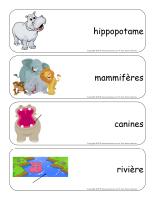 Étiquettes-mots géants-Les hippopotames