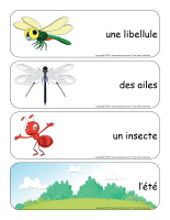 Étiquettes-mots géants-Les libellules-1