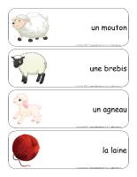 Étiquettes-mots-géants-Les moutons