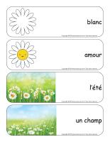 Étiquettes-mots géants-Marguerites-3