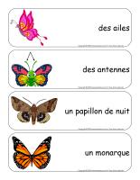 Étiquettes-mots géants-Papillons-1