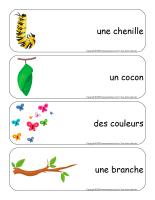 Étiquettes-mots géants-Papillons-2