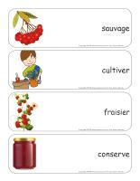 Étiquettes-mots géants-Petits fruits-3