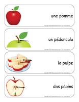 Étiquettes-mots géants-Pommes-1