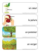 Étiquettes-mots géants-Pommes-2